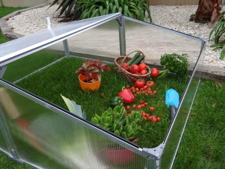 Quelle serre choisir pour mon jardin ?