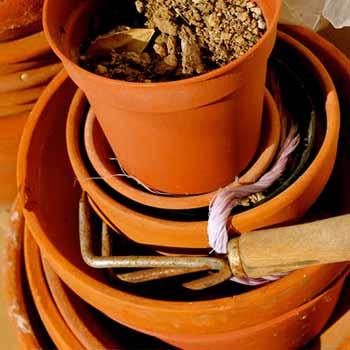 Pot et outillage pour les plantations